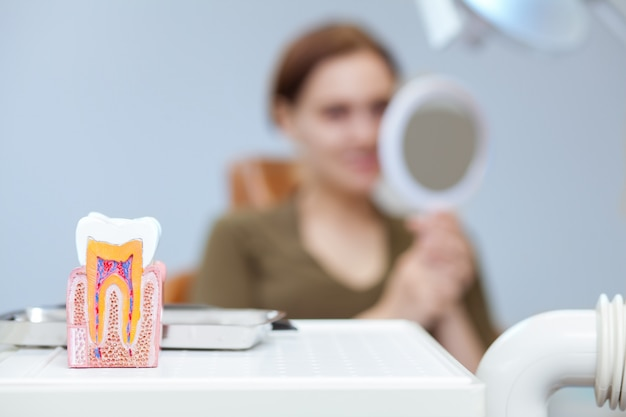 Selective focus on tooth model, woman examining her teeth in the mirror on the background