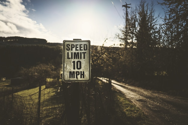Selective shot of speed limit signage on the road near trees on a sunny day