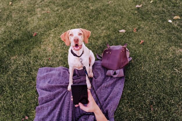 公園で彼女の犬と携帯電話でselfieを取る若い女性