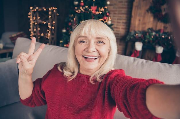 おばあちゃんの自画像は、装飾されたロフトのインテリアハウスで冬の休暇ショーvsignを過ごします