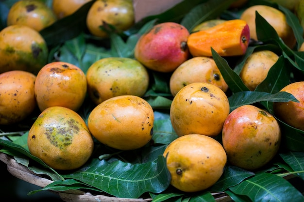 Selling fresh mangoes in the indian market in mauritius