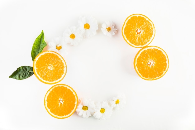 Semicircle from oranges and chamomiles