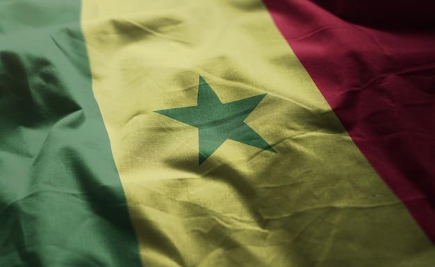Senegal flag rumpled close up