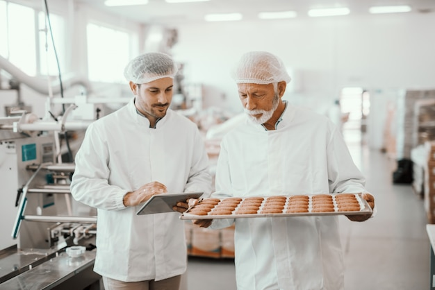 Senior adult employee holding tray with fresh cookies while supervisor evaluating quality and holding tablet. both are dressed in sterile white uniforms and having hairnets. food plant interior.