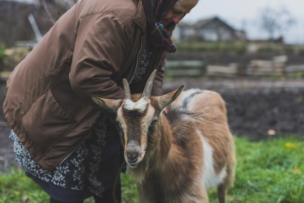 Старшая взрослая женщина и коза