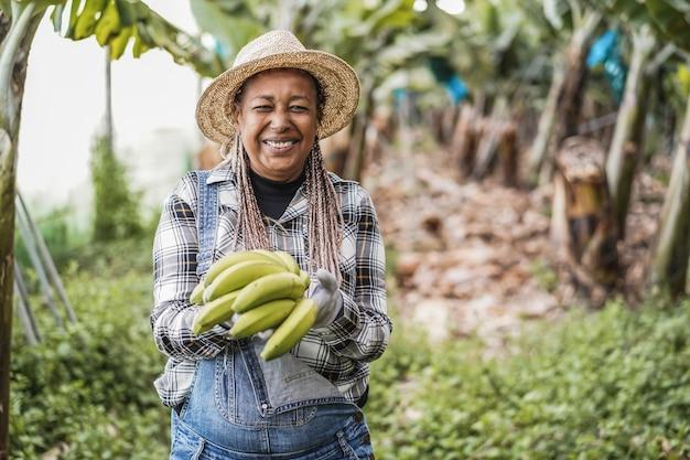 바나나 무리를 들고 온실에서 일하는 수석 아프리카 농부 여자-얼굴에 초점