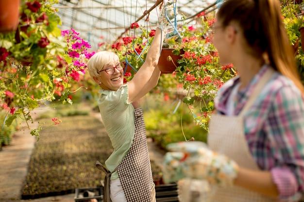 晴れた日に花園で一緒に働く高齢者と若い女性