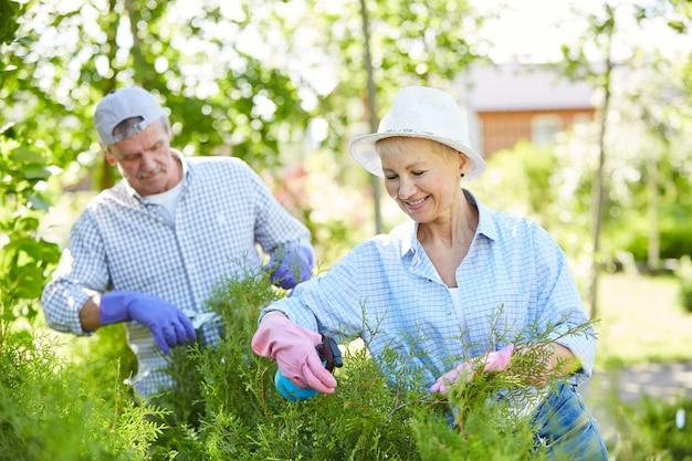 植物の世話をする年配のカップル