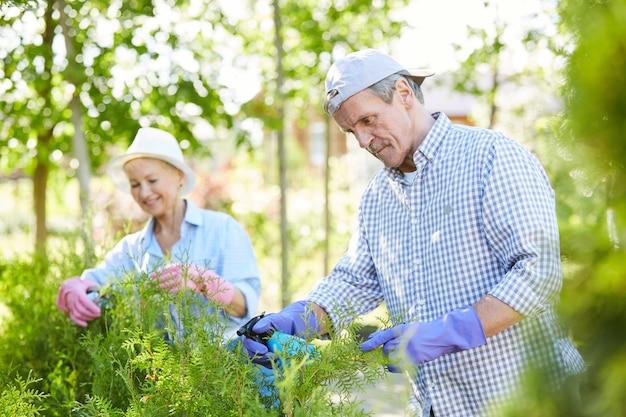 Senior couple gardening outdoors