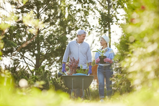家族の庭で年配のカップル