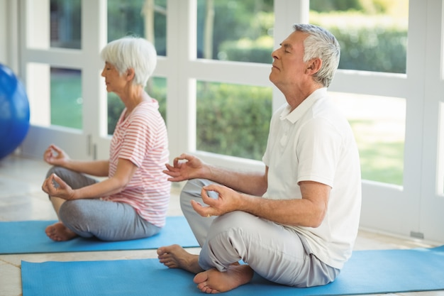 Senior couple performing yoga on exercise mat