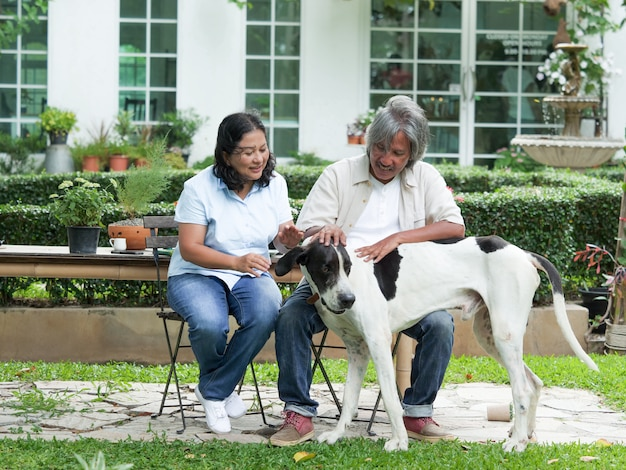 Senior couple playing with big dog in home garden.