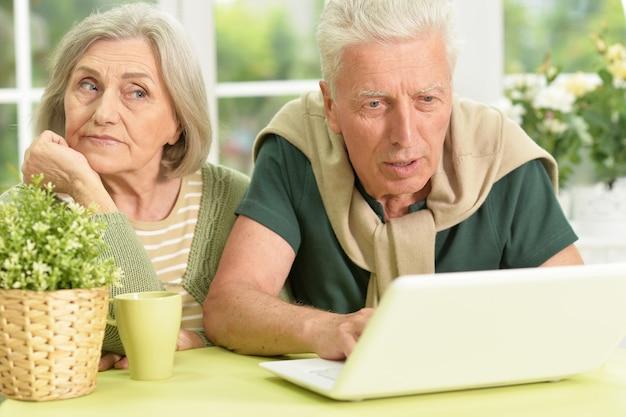 집에서 노트북으로 수석 부부 초상화