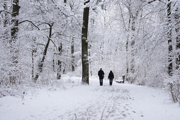 冬の公園を歩く年配のカップル