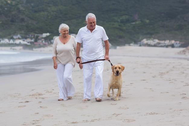Пожилая пара гуляет на пляже с собакой