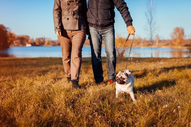 Senior couple walking pug dog in autumn park by river enjoying time with pet
