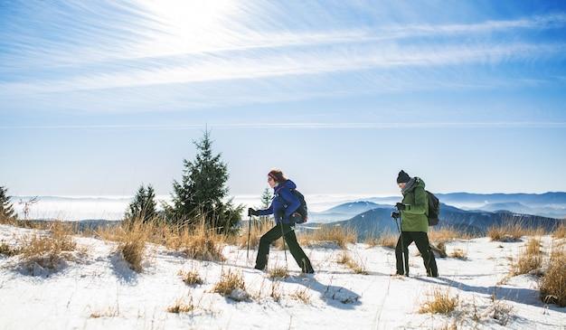 雪に覆われた冬の自然の中でハイキングするノルディックウォーキングポールと年配のカップル