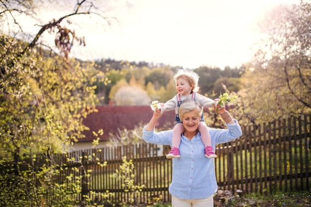 Senior grandmother with toddler granddaughter standing in nature in spring, giving piggyback ride.