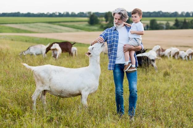 Senior holding ragazzino e giocare con le capre