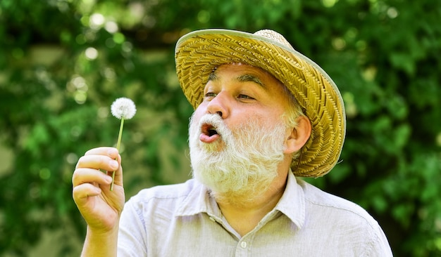 Senior man blowing dandelion seeds in park. elderly man in straw summer hat. concept memory loss. concept of baldness and hair loss. happy and carefree retirement. grandpa farmer.
