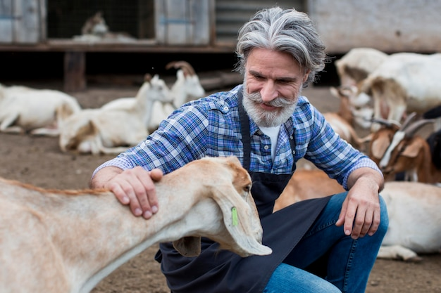 Senior man playing with goats
