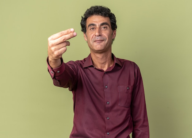 Senior man in purple shirt looking at camera smiling confident showing two fingers standing over green
