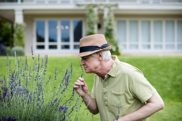 Старший мужчина пахнущий лавандой