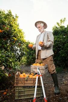 Uomo maggiore in piedi accanto ai suoi alberi di arancio