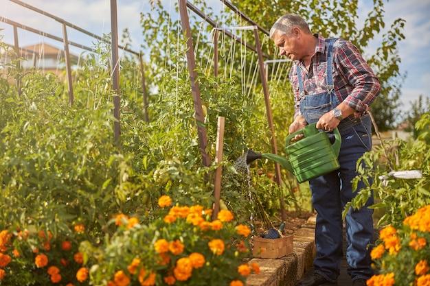 彼の庭の鉢から植物に水をまく立っている年配の男性