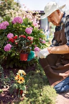 Uomo maggiore che lavora nel campo con i fiori