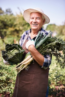 Senior man working in the field with vegetables