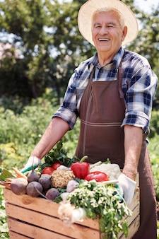 Старший мужчина, работающий в области с фруктами