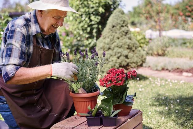 植物とフィールドで働く年配の男性