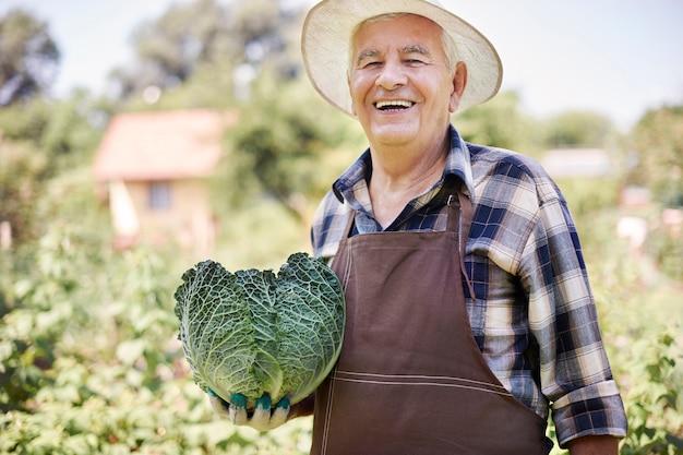 Старший мужчина, работающий в поле с овощами