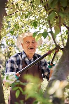 Старший мужчина, работающий в области
