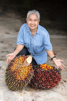 Женщина азии старшего владельца показывая пук красных семян пальмы во время изучения урожая и счастливой улыбки с продуктом в саду.
