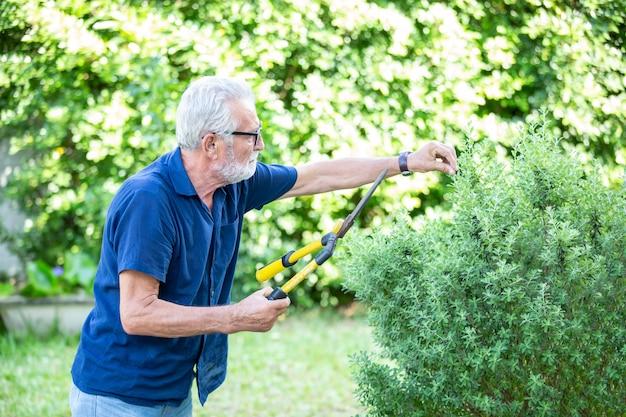 Senior people doing gardening in house
