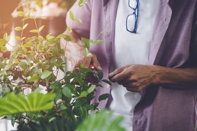 Senior retired man cutting plant inside his home garden