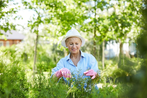 年配の女性切削低木