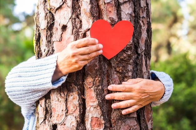 숲 속의 시니어 여자 손은 나무 줄기에 하트 모양을 그려 모든 나무에 하트가 있다는 것을 알려줍니다. 지구의 날 개념. 함께 삼림 벌채로부터 지구를 구하십시오