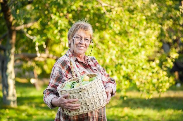 青リンゴと籐のバスケットを保持している年配の女性。