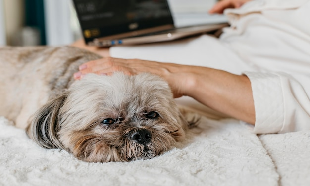 犬とくつろぐ年配の女性