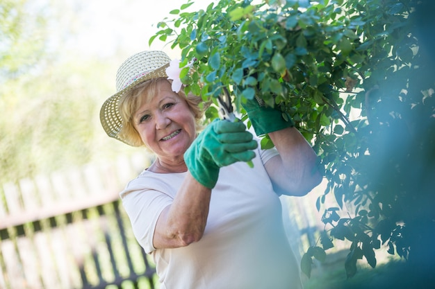 年配の女性が剪定ばさみで植物をトリミング