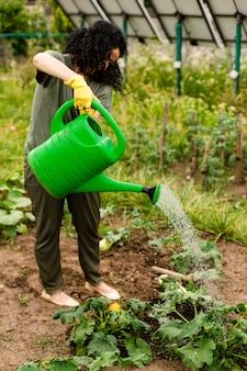 年配の女性が作物に水をまく