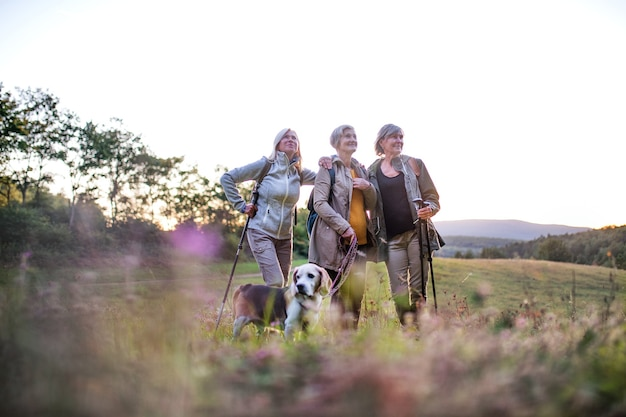 Senior women friends with dog on walk outdoors in nature, standing.