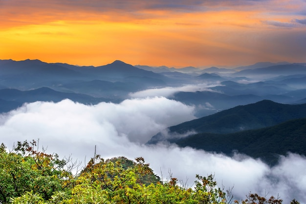 韓国、ソウルの雪岳山は朝霧と日の出に覆われています