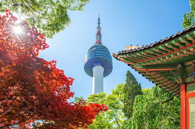 Seoul tower with gyeongbokgung roof and red autumn maple leaves at namsan mountain in south korea