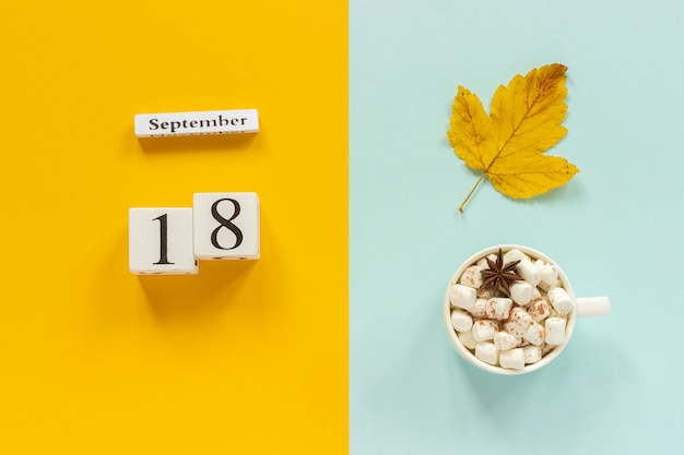 September 18, cup of cocoa with marshmallows and yellow autumn leaves