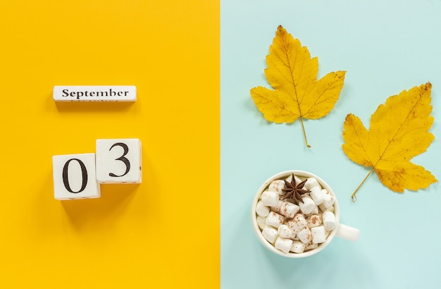 September 3, cup of cocoa with marshmallows and yellow autumn leaves on yellow blue background