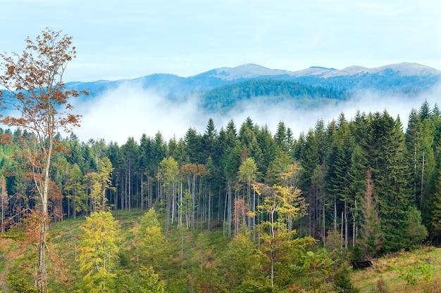 9月カルパティア山脈の丘と背後の曇りの朝の景色。